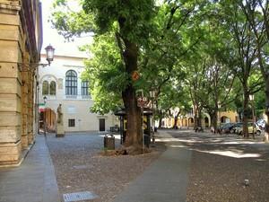 Piazza del Liviano