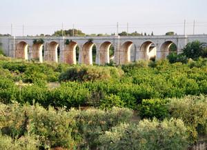 Un ponte imponente
