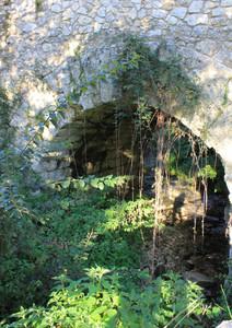 Ponte romano fra le ortiche ed i rovi