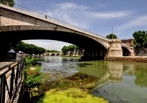 verde galleggiante sotto un ponte