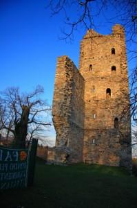 Torre di Velate (Foto unica)