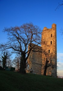 Torre di Velate 2 (Foto unica)
