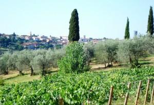 Val di Pesa , Val di verde , val di vino…