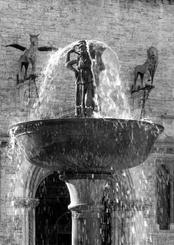 Perugia - I guardiani di Fontana Maggiore