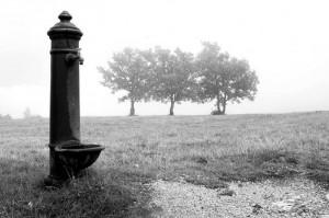 La fontana nella nebbia