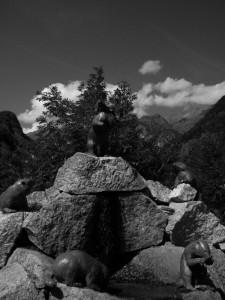 La fontana delle marmotte