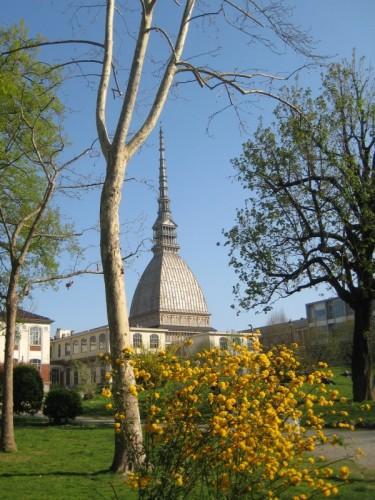 Torino - Tra i colori d'aprile