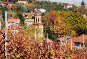 I colori dell'autunno sulla collina di MANTA di Saluzzo