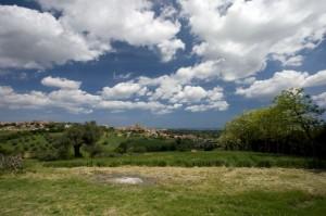 """Panorama """" Monte San Vito """""""