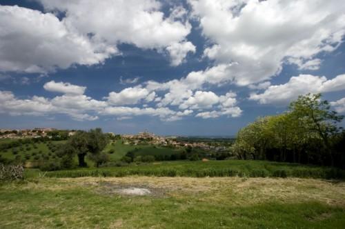 """Monte San Vito - Panorama """" Monte San Vito """""""