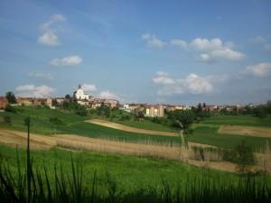 Sulle verdi colline del Monferrato