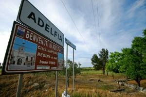 Benvenuti ad Adelfia: città dell'UVA REGINA e del buon vino