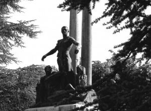 I giovani alberi si son fatti grandi onorando i caduti