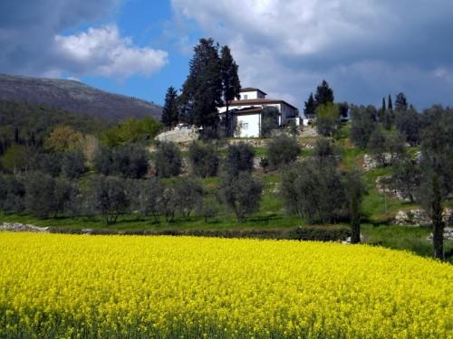 Calenzano - Campo de' Fiori
