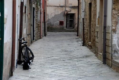 Fondi - A guardia della bici nuova