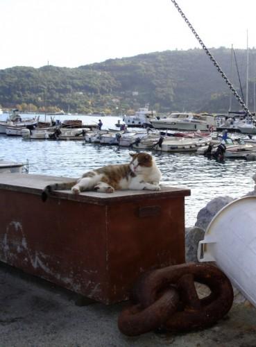 Portovenere - Il Marinaio