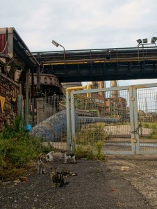 Piombino Steel town