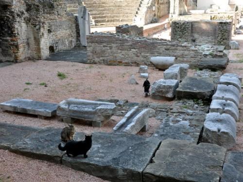 Trieste - Lezioni di storia