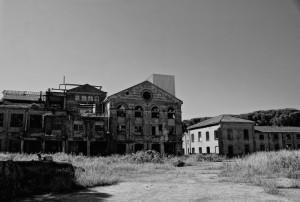 La fabbrica dello zucchero #2