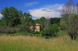 Casolare nei pressi di Fauglia