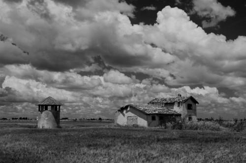 Foggia - Tra le Nuvole ed il Grano