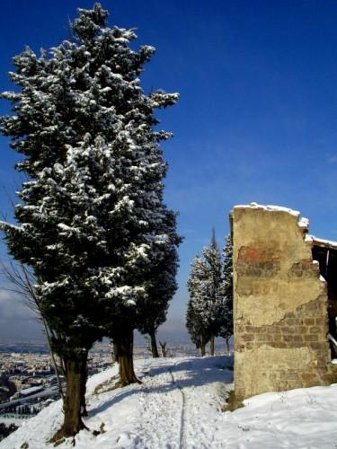 Prato - Il sentiero innevato