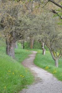 rilassante passeggiata