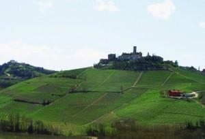 Un cocuzzolo di storia, nelle Langhe:Castiglione Falletto