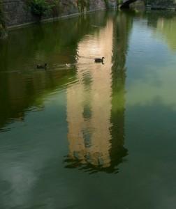 Nuotatina nel fossato