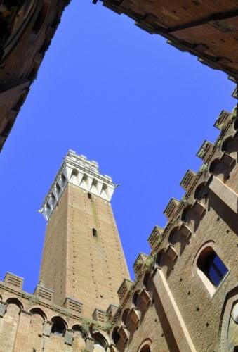 Siena - Torre antica.....