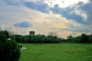 Nubi sui Borgia
