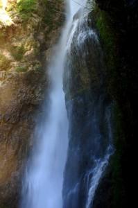 La bellezza della natura