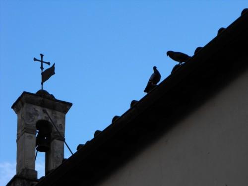 Firenze - Piccolo ma carino.....