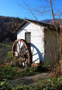 La ruota e la sua ombra