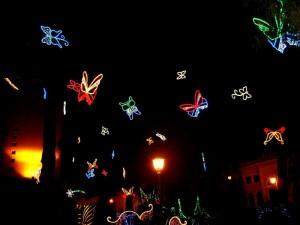 Farfalle natalizie. Luci d'artista nella villa comunale di Salerno.