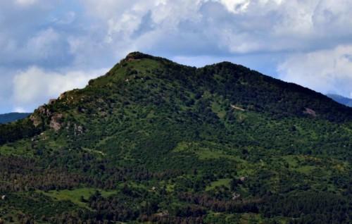 Nicosia - Monte Altesina