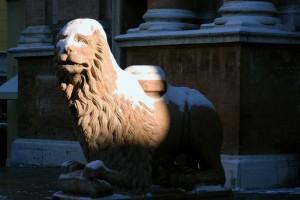 Un freddo da leoni