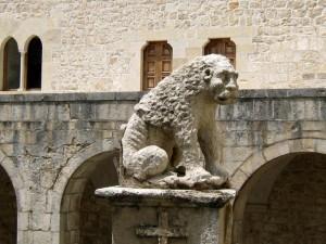 Un anziano  leone