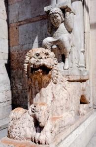 Il Leone e il Talamone riccioluto