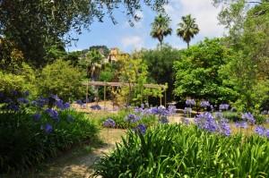Che colori la natura! Giardino Botanico Villa Hanbury