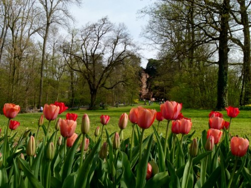 Pralormo - Messer Tulipano