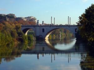 Ponte narciso
