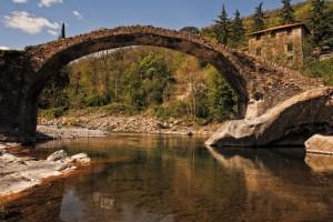 ponte..narciso..