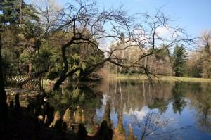 Parco della Villa Revedin Bolasco