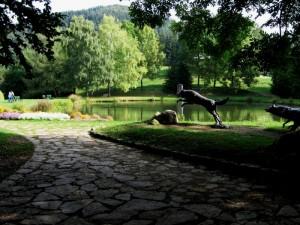 Il giardino del Parco Naturale dell'Orecchiella