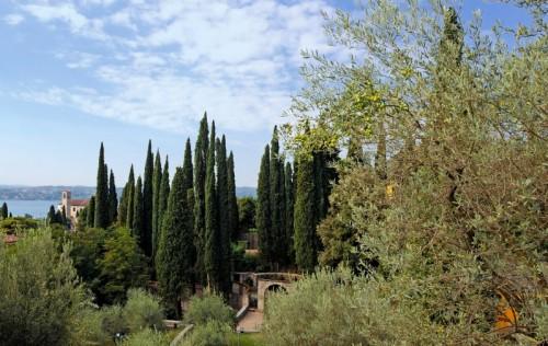 Gardone Riviera - Fra i mediterranei alberi d'olivo e gli svelti cipressi...
