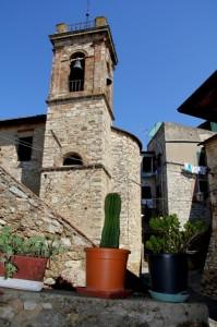 campanile spinoso