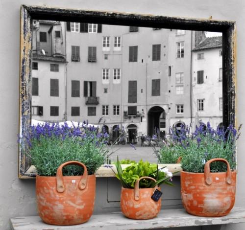 Lucca - Specchio,specchio......