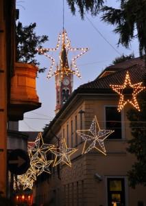Intreccio di stelle natalizie