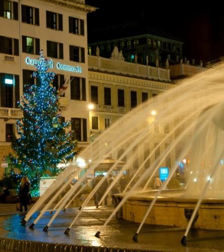 Genova - l'albero della piazza